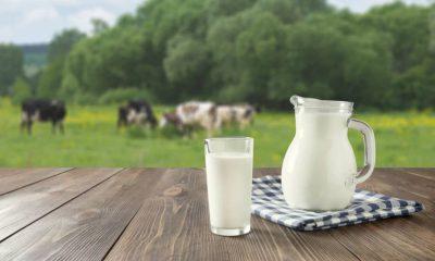 centrale del latte puglia